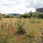 vacant land (c) Scottish Land Commission
